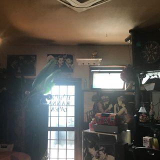 店舗改修工事 / 海老名市